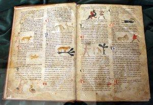 Bestiary medieval book
